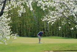 orchards golf course