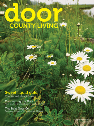 Door County Living Cover v13i1 daisies