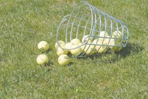 dclv01i01-fairways-ball-basket