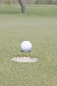 dclv01i01-fairways-golf-back