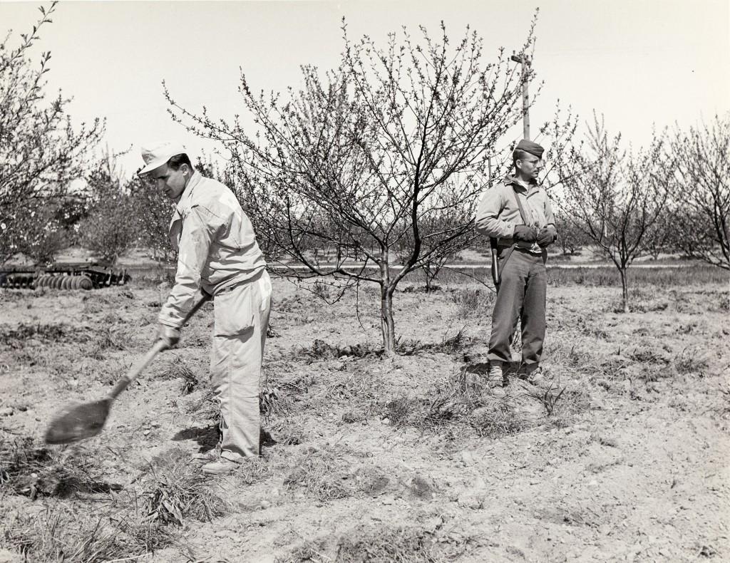 dclv03i02-history-POW-shoveling
