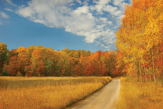Gerald Hug, Door County, Fall Colors
