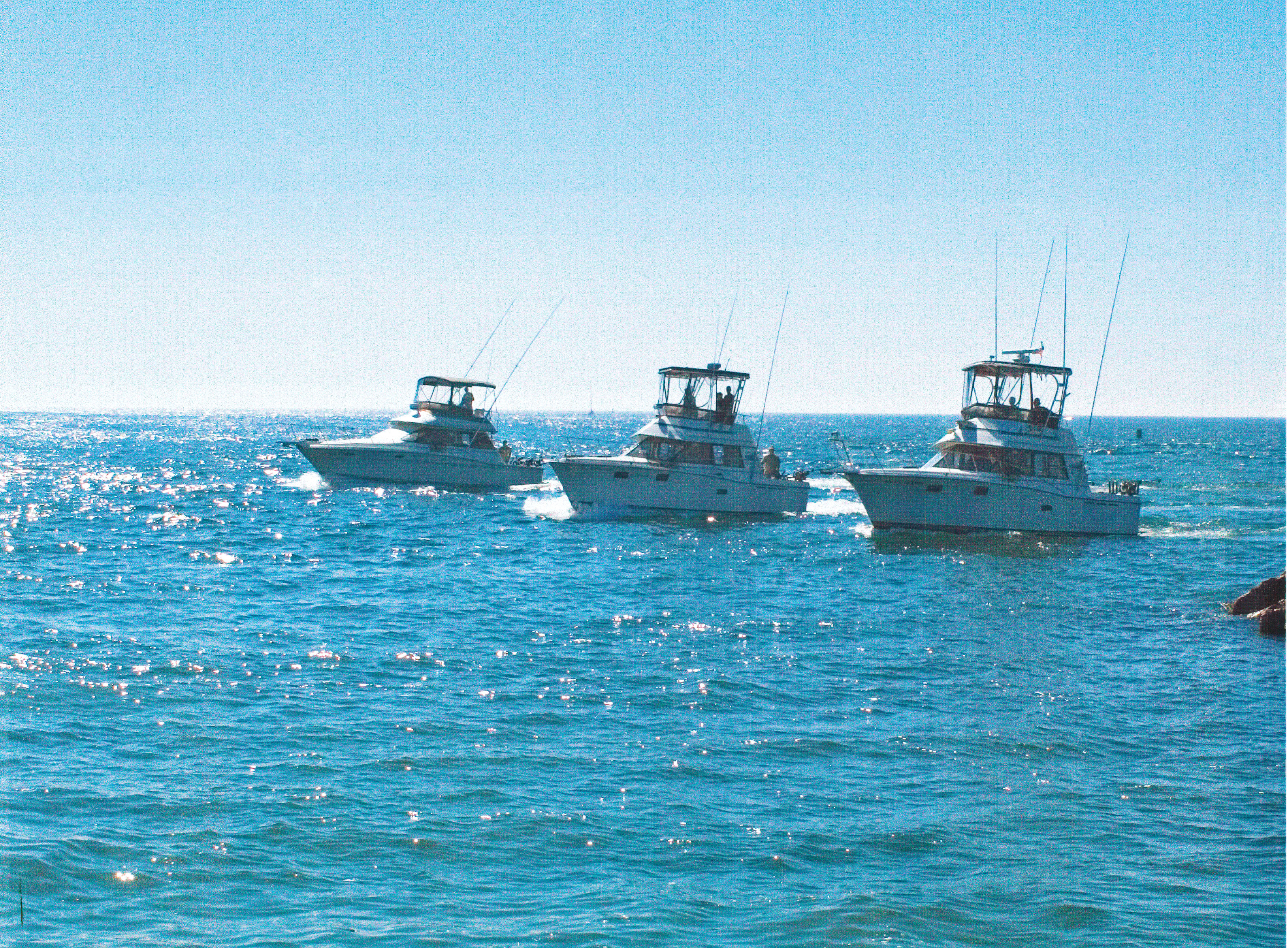 Reel action sport fishing charters door county pulse for Door county fishing charters