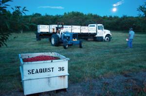 dclv07i03-history-seaquist-truck