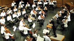 dclv08i02-music-scene-PMF-orchestra