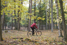 Cycling in woods