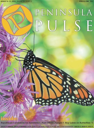 Pulse Cover v20i32 Monarch butterfly
