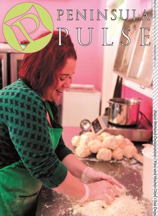 Pulse Cover v21i20 Sara Zacek Harbor Pies
