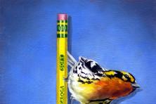 """""""Blackburnian on Pencil"""" by Rebecca Korth."""