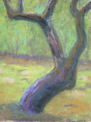 """Old Apple Tree"" by Gretchen Misselt."