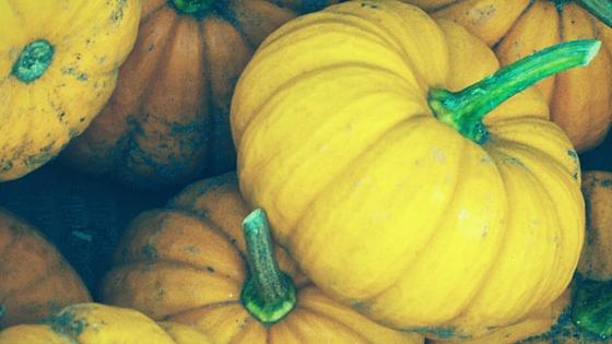Pumpkins Baileys Harbor Autumnfest