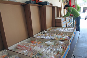 Sarah DeNamur organizes nearly 7,000 cookies that came into Sister Bay in the past two weeks. Photo by Jackson Parr.