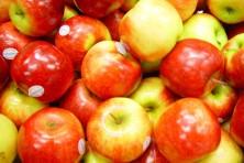 apples public domain