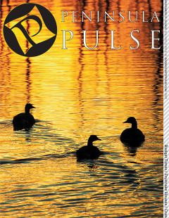 This shot of ducks on sun-dappled water are from Len Villano's autumn day journal.