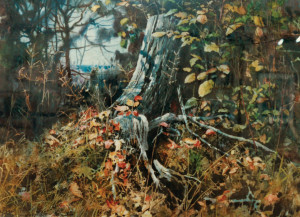 """The Old Pine Stump,"" egg tempera."