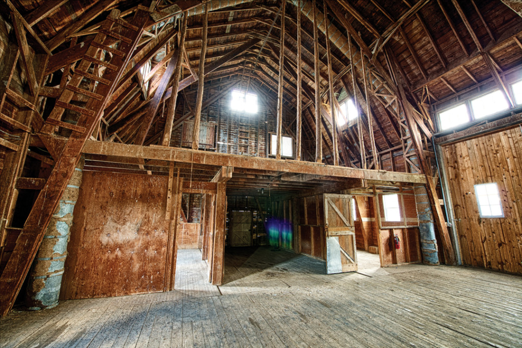 Inside the mammoth barn at Horseshoe Bay Farm. Photo by Len Villano.