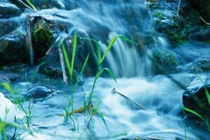 dclv10i02-habitats-gray-water-treatment-system