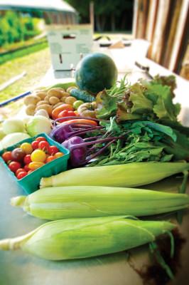 Len Villano, veggies