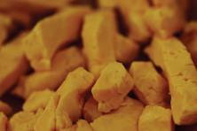 Katie Sikora, cheese curds