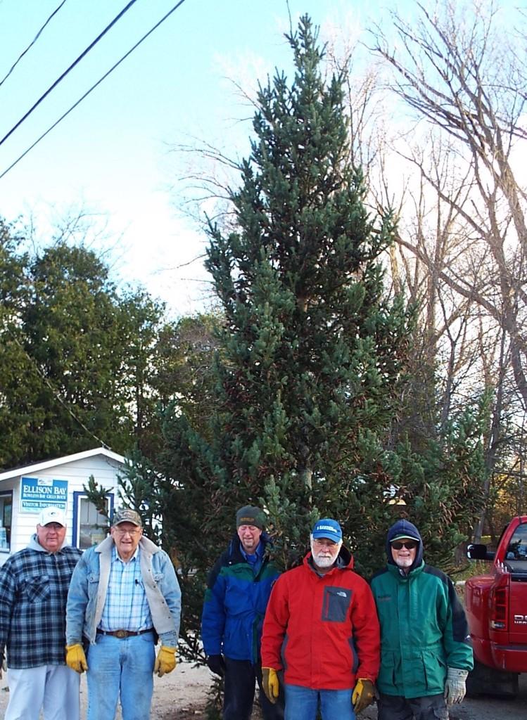 Newman Christmas Trees.Ellison Bay Tree Lighting Is Dec 6 Door County Pulse
