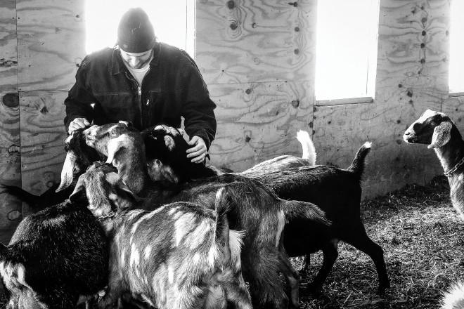 Len Villano, Jesse Johnson, goats