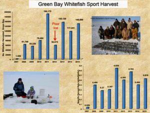 sport harvestWEB
