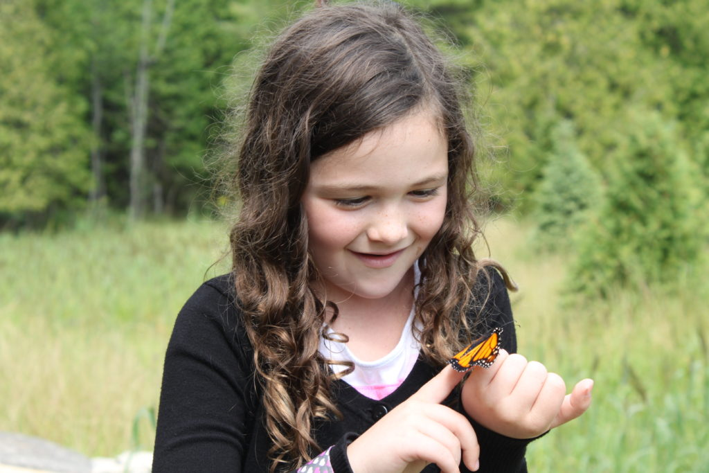 Rose Hara, 8, releases a tagged monarch butterfly at The Ridges Sanctuary. Photo by Jackson Parr.
