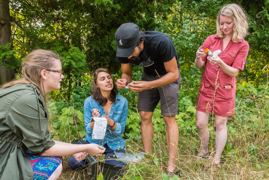 (From left) Grace Johnson, Anna Mae Beyer, Jackson Parr and Alyssa Skiba check out their geocache finds during an adventure in Baileys Harbor. Photo by Len Villano.