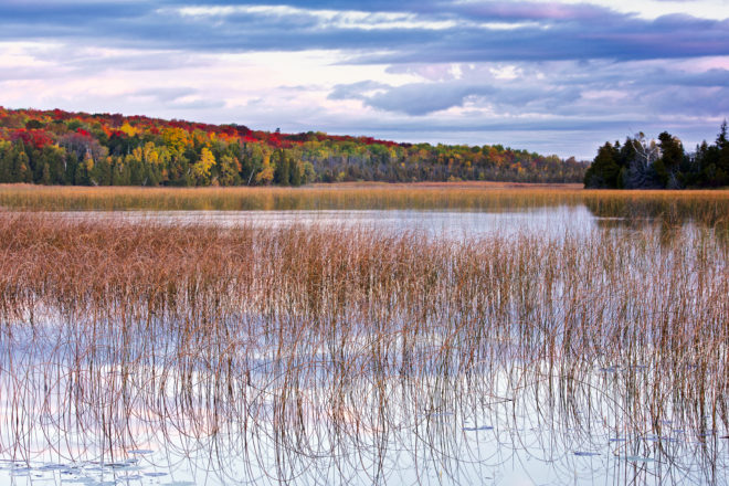Door County Fall Color: Travel Wisconsin Releases Fall Color Tool