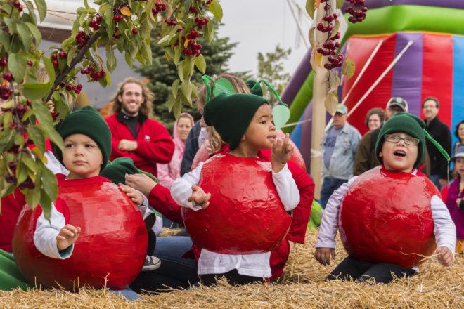 Framed: Cherries at Fall Fest