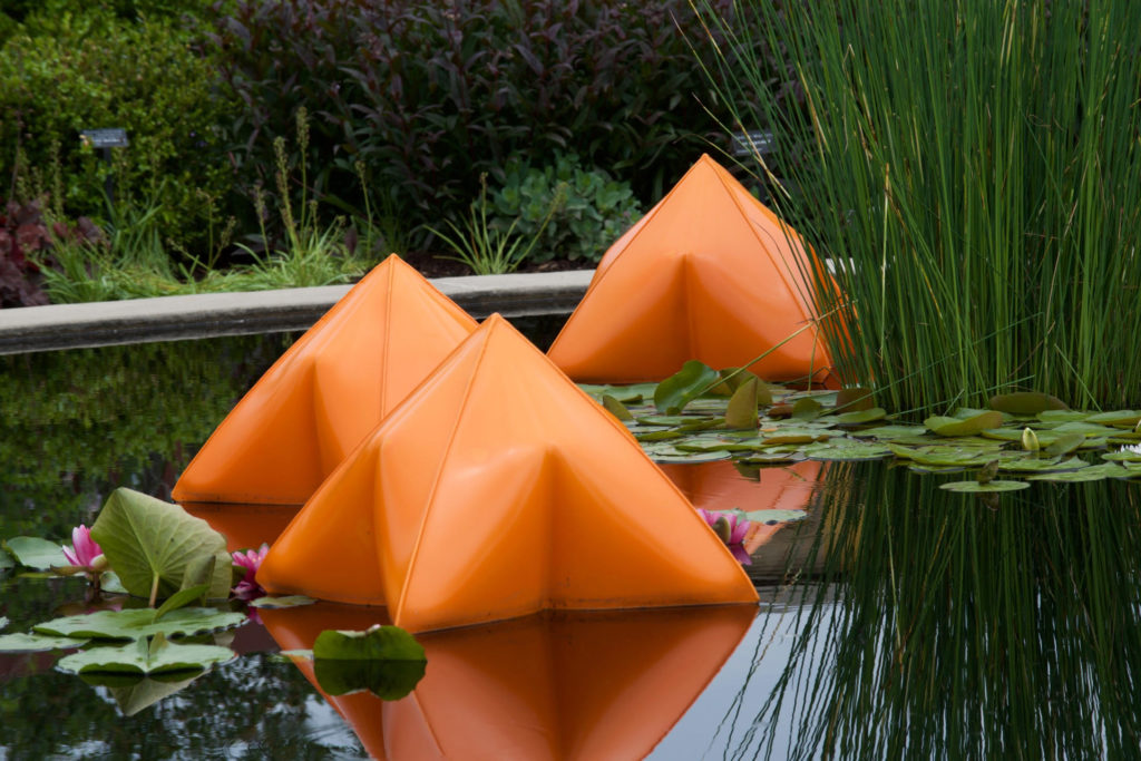 """Pods in Pond"" by Robert Anderson."