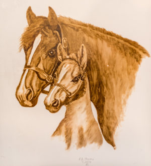 Mare and colt coffee painting by Florence Thoms.