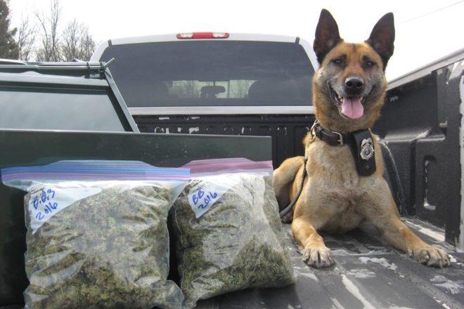 21 Arrested in Southern Door In Drug Investigation