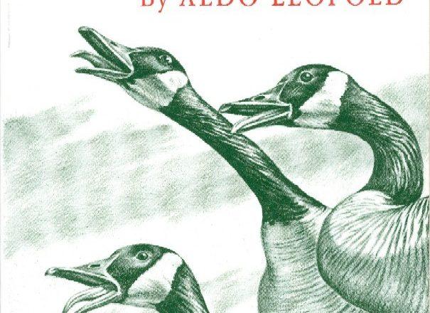 Celebrate Aldo Leopold Weekend with Marathon Reading