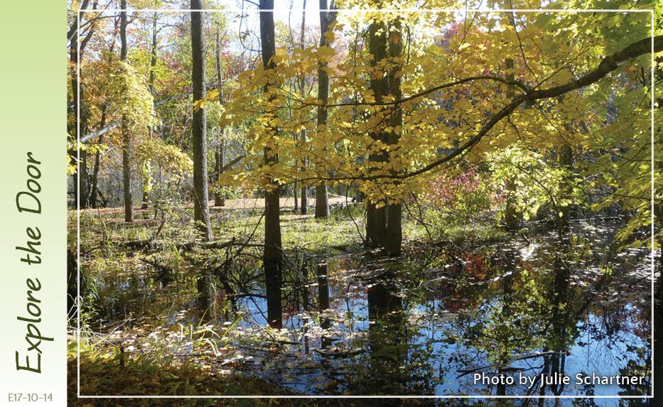 Door County Land Trust. Autumn at Anderson Pond Walk.