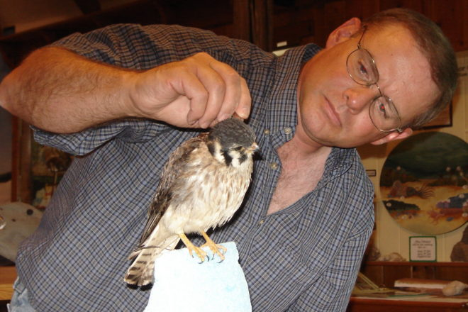 Master Taxidermist To Give Talk At Door County Historical Museum June 17