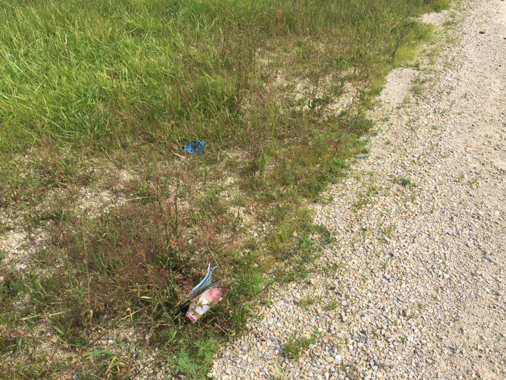 Cycling Tragedy in Fish Creek