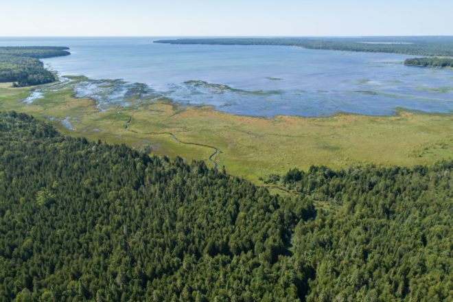 Door County Land Trust Surpasses 8,000 Acres Protected