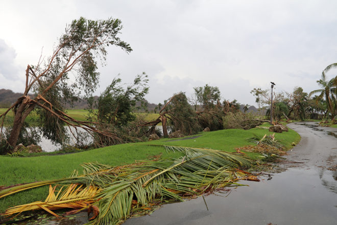 Puerto Rican Struggle Hits Home for Families With Door County Ties