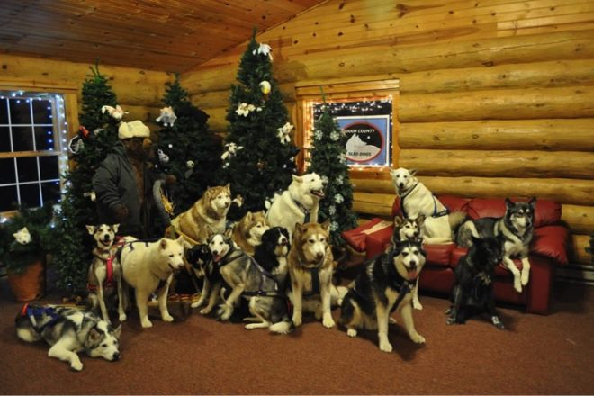 Door County Sled Dogs Hold Pet Pictures With Santa Door County Pulse