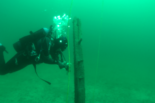 The Search for La Salle's Lost Ship 'Le Griffon' Continues