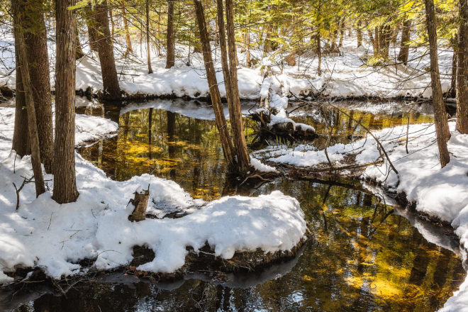 Len Villano's Pic of the Week: Snowy Creek