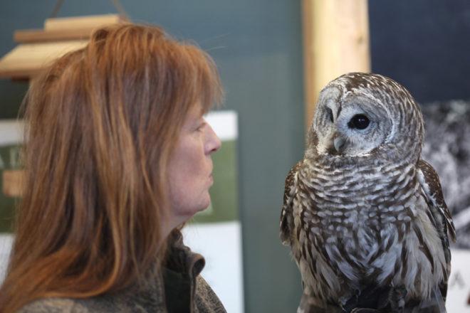 Open Door Holds Program at Kress Pavilion for Migratory Bird Day