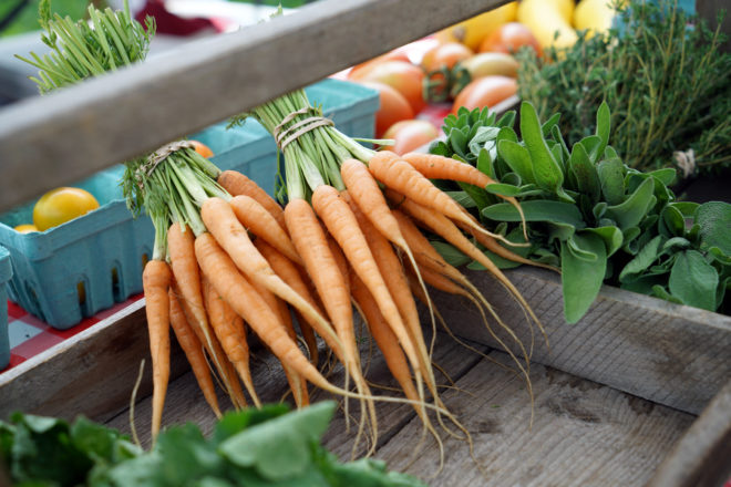 Egg Harbor Farmers Market Opens with New Location