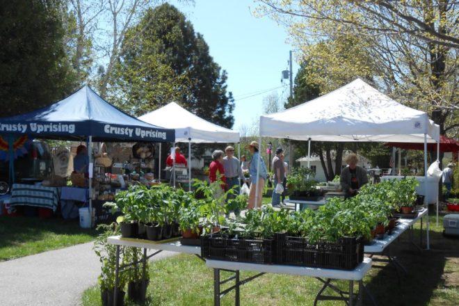 Annual Fish Creek Plant Sale Farmers Market