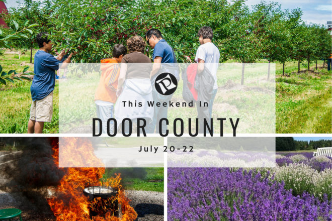 This Weekend in Door County: Lavender Days on the Island