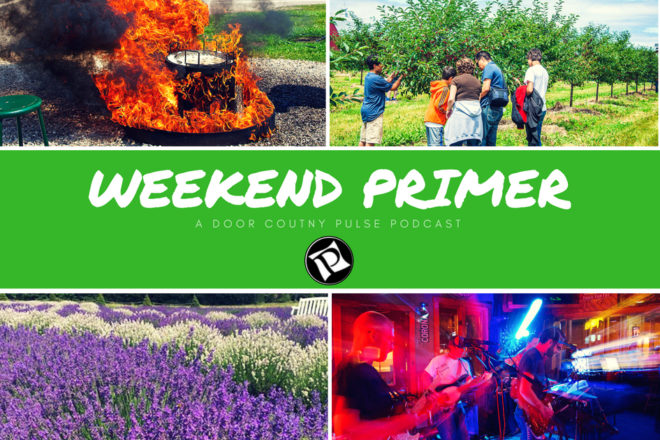Weekend Primer Podcast: Live Music, Lavender Festival, LEGO Brick Party