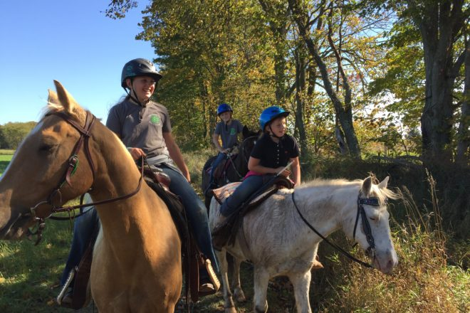 Horse and Pony Trail Ride in Egg Harbor