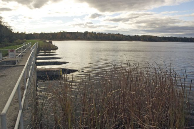Petition Circulating Against Forestville Millpond Drawdown