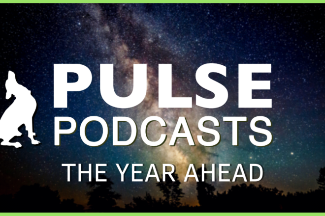 5 Big Things for Door County: Pulse Podcast